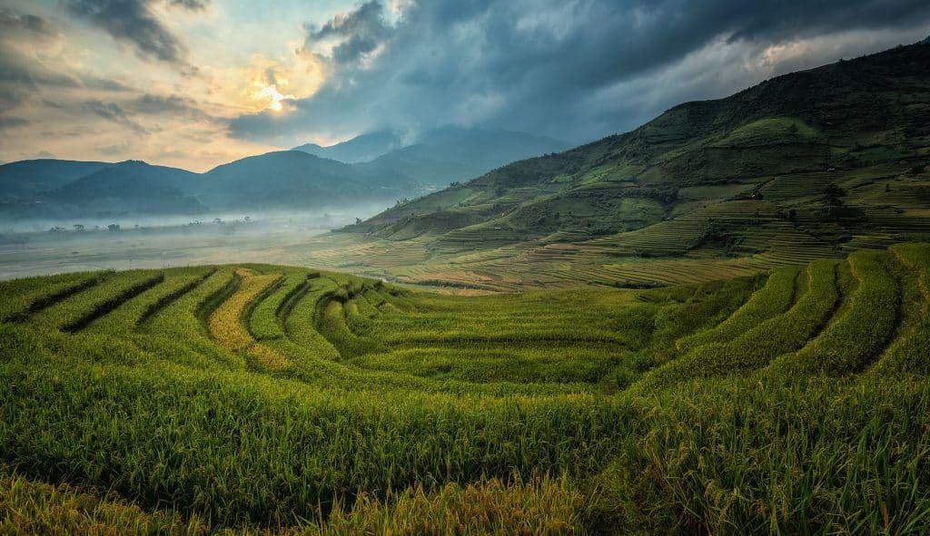 Volontariato Filippine imprenditoria agricola